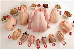 10651 گوشت بوقلمون گوشت معجزه گر